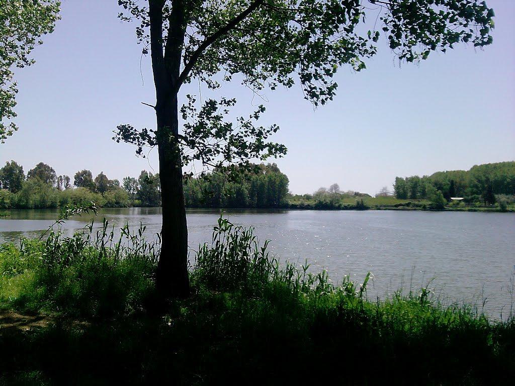 Il Lago di Falciano (Foto di mapio.net)