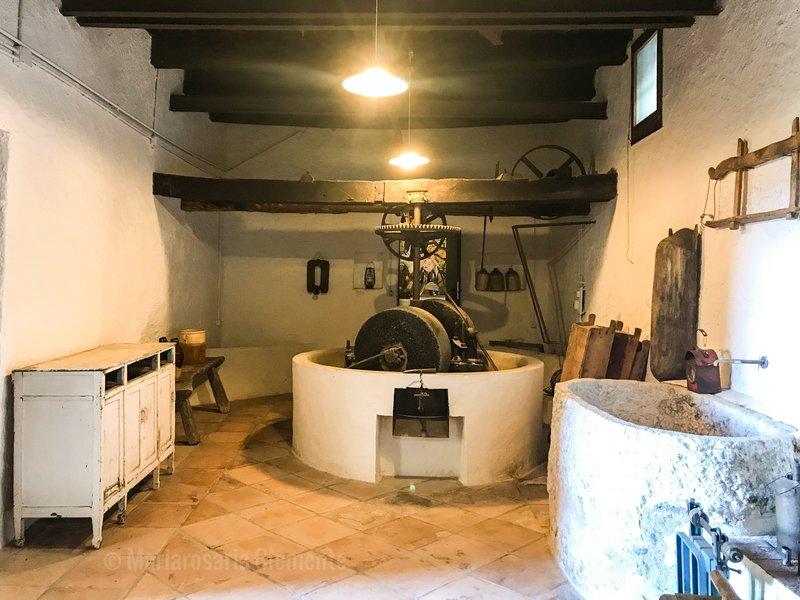 Breakfast Casa Aulivo - Frantoio