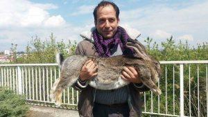 Giosuè. il Coniglio Di Raviscanina e il suo padrone Gioni