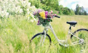 Biciclettata in Comune, una bici piena di fiori