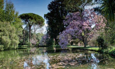 Nel parco di Caserta - Giardino Inglese