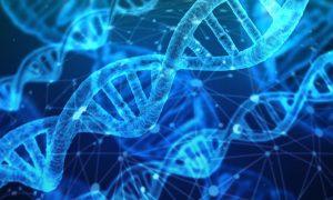 Un Assist alla Ricerca - la genetica
