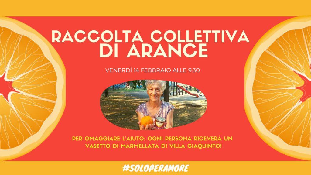 arance di villa Giaquinto: la locandina dell'evento