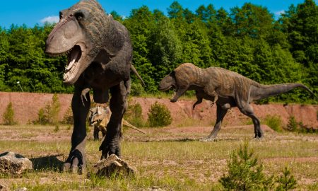 Dinosauri nel parco