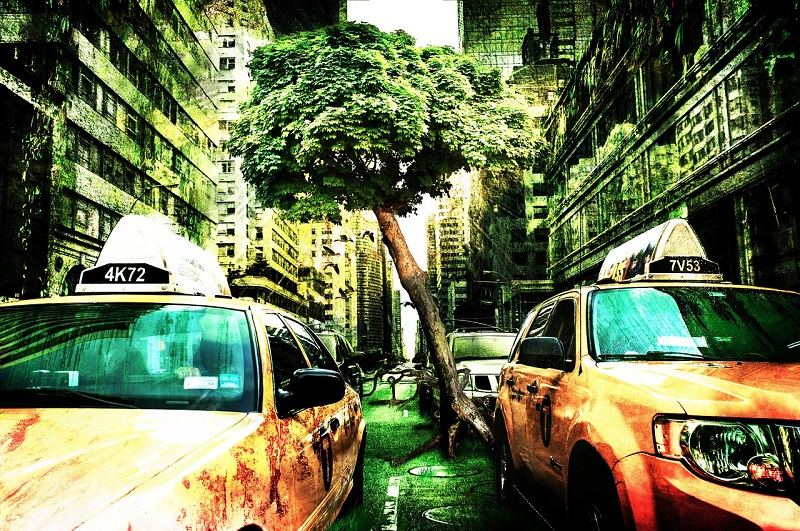 Città Senza Smog Auto In Città 1