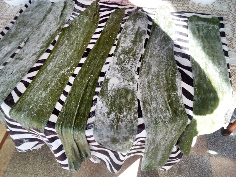 la pasta verde - strisce ad asciugare