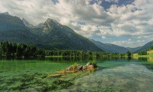 Green Natura Verde