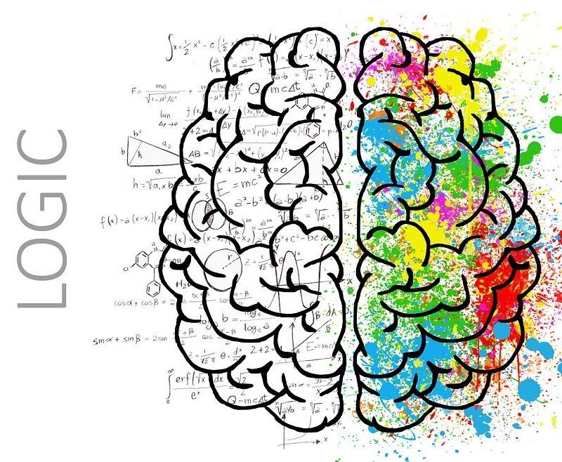 Maturità Cervello