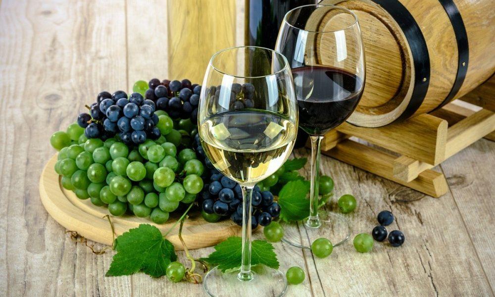 Vitivinicoltura Produzione Vini