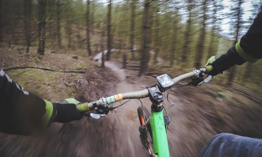 Downhill Discesa Rapida