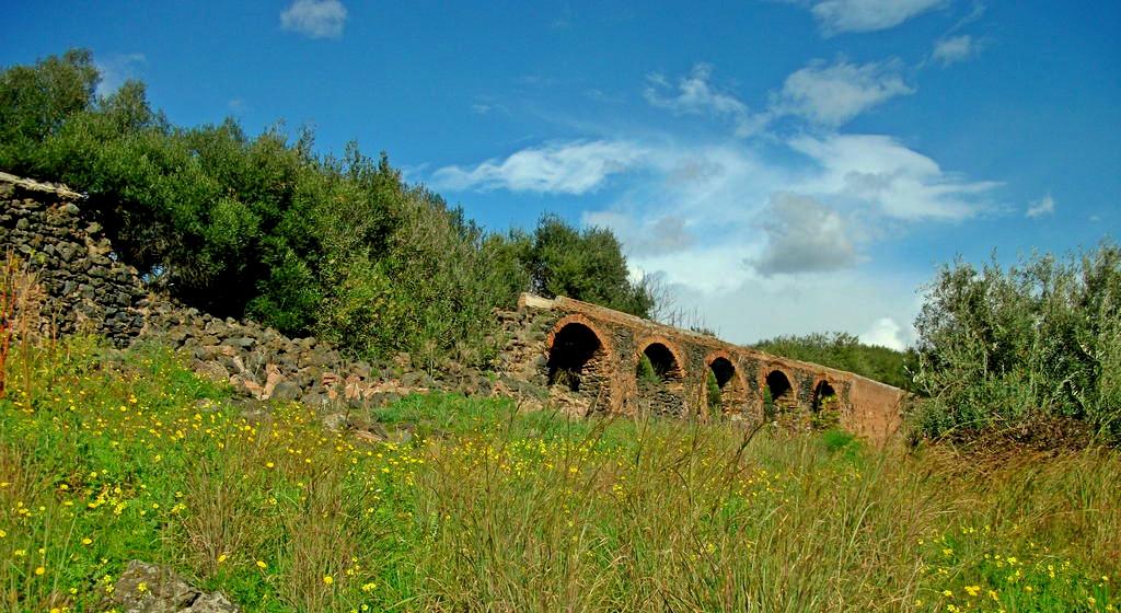 Cinque itinerari verdi: Parco Gioeni