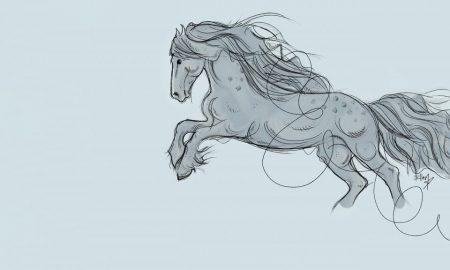 Cavallo vescovo