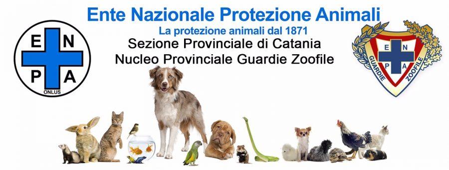 L'E.N.P.A. protegge i nostri amici animali dal 1871