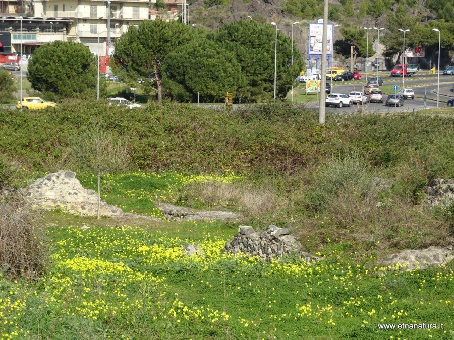 Area archeologica di Monte Po. Fonte foto: Etna Natura.