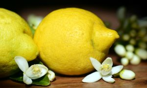 Lemons 2245524 1280