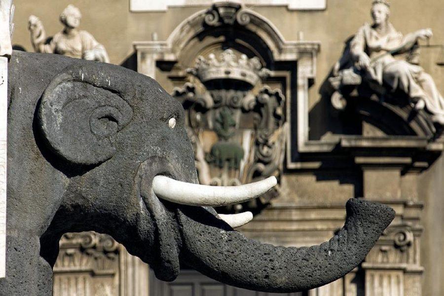 Liotru, simbolo di Catania. Fonte foto: Sicilian Post