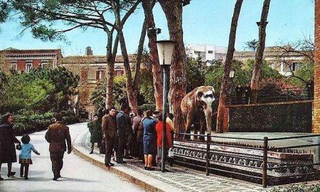 Tony alla Villa Bellini. Fonte foto: Biblioteca Regionale Universitaria di Catania