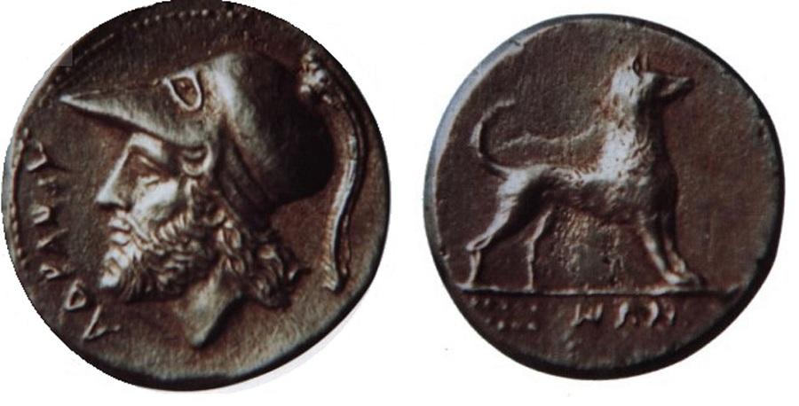 Le monete di Adrano. Fonte foto: adranoeilcirneco.blogspot.com