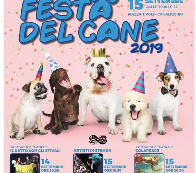 Festa Del Cane 2019