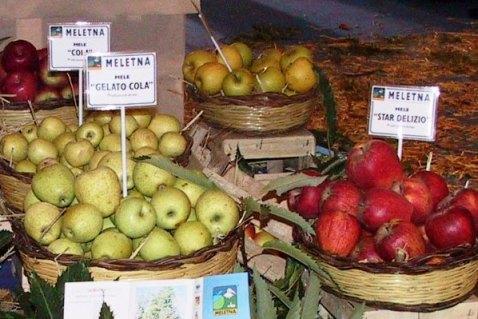 La mela gelato cola, altra variante delle mele dell'Etna nate dalla cola, ha ottenuto il riconoscimento Presidio Slow Food.