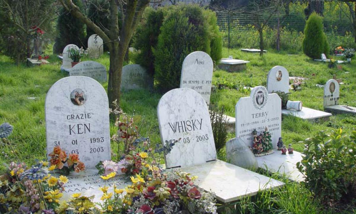 Cimitero per gli animali