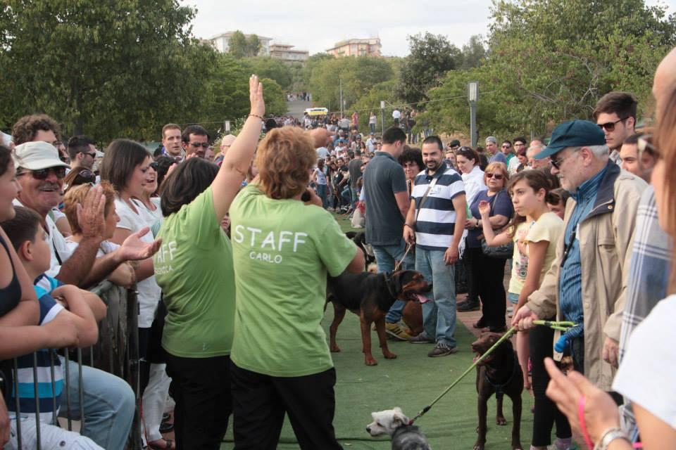 area di sgambamento - persone che partecipano alla Festa Del Cane A Catania
