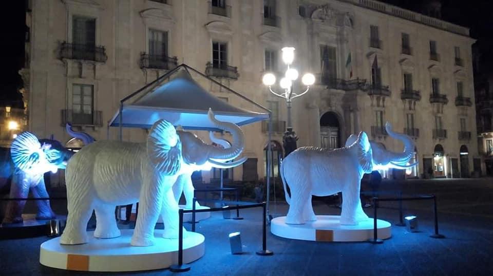Quattro liotri, realizzati in plexiglass bianco, sono stati posti ai lati di piazza università e progressivamente colorati dall'artista Ligama.
