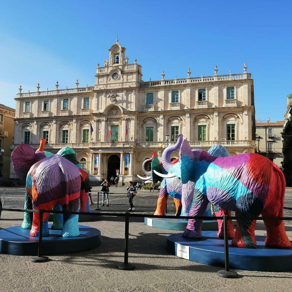 I quattro elefanti di piazza università,dalle tinte multicolore, sono realizzati con la tecnica del pixel ideata da Ligama