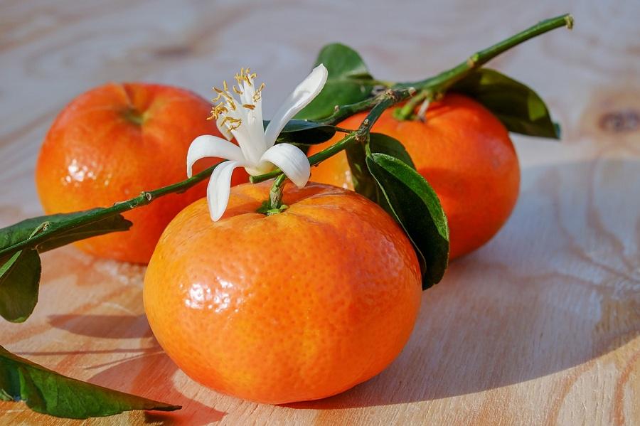 Clementine Delletna 1