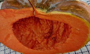 La Zucca è uno degli ingredienti principali della cucina in autunno.