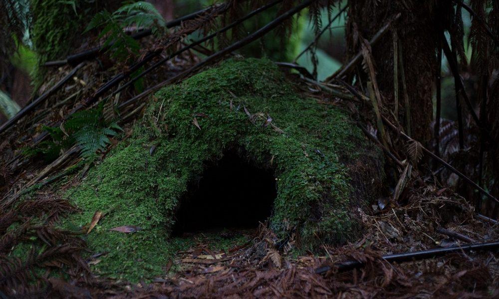 Grotte in città: tra fede e leggende- Foto: Pixabay