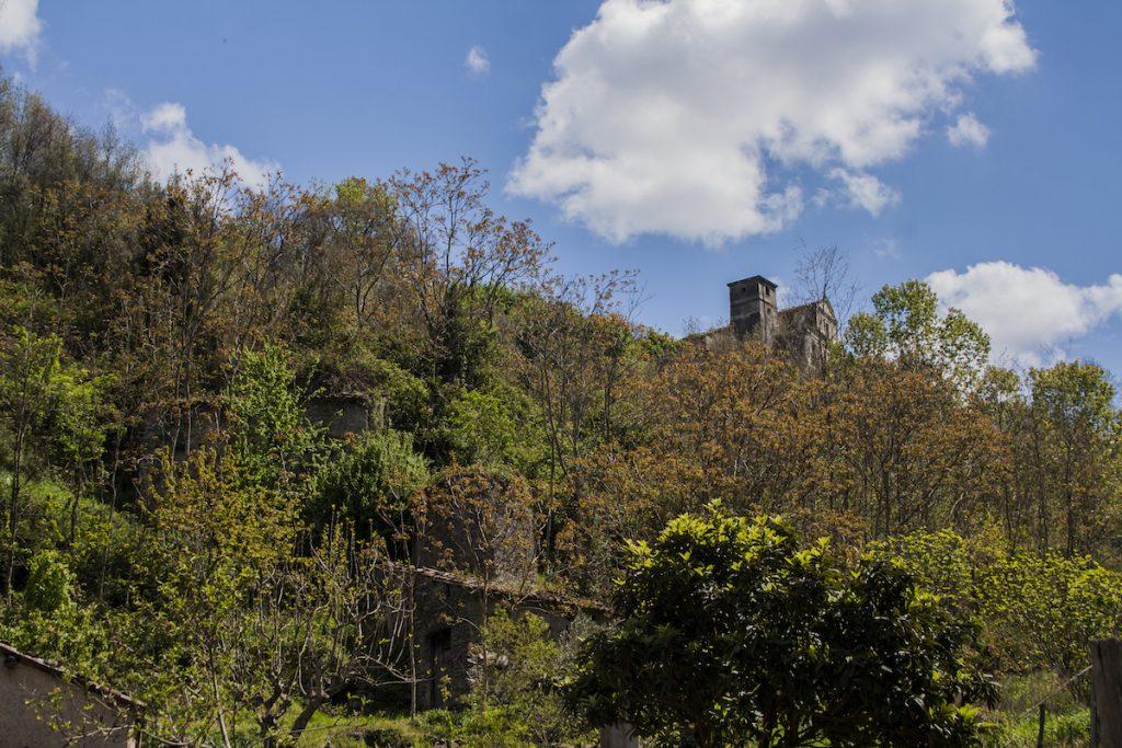Mulino a pietra: un mulino tra gli alberi