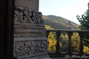 Miriam Guzzi: la querciola vista da dietro un muro