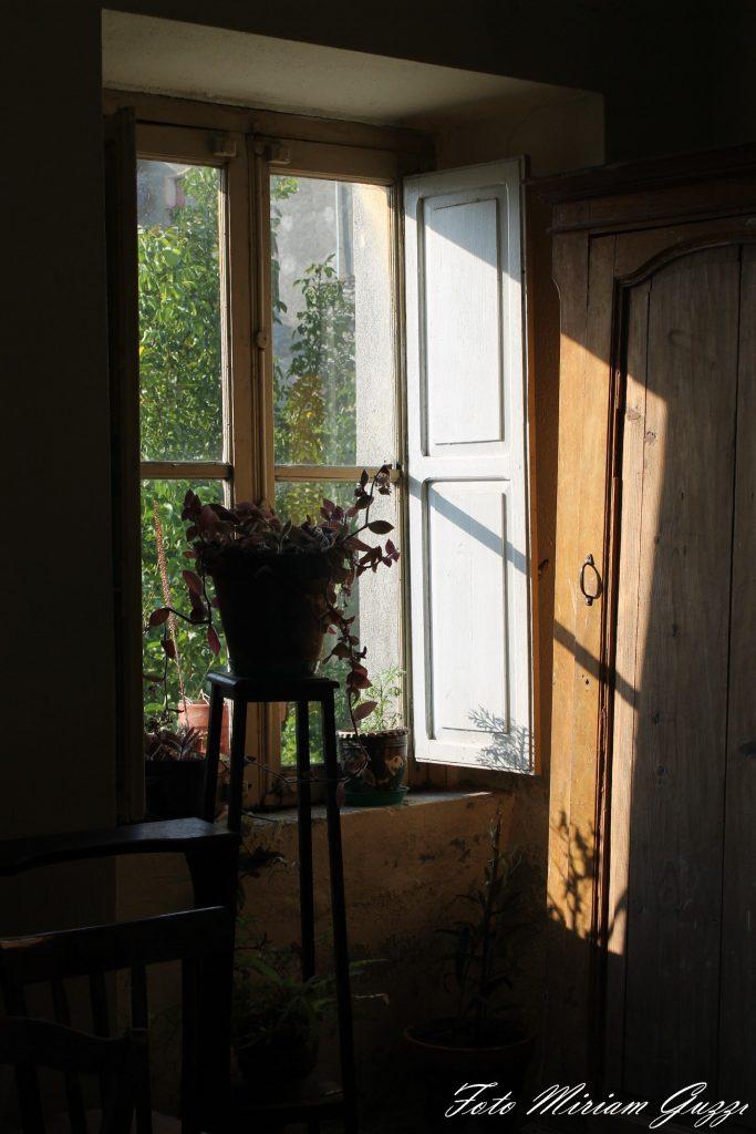 Miriam Guzzi: una finestra