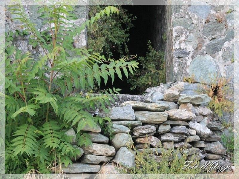 incanto: uno scatto di una breccia tra le pietre
