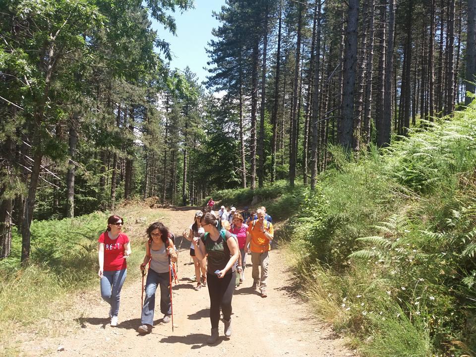 reventino: camminare nella natura