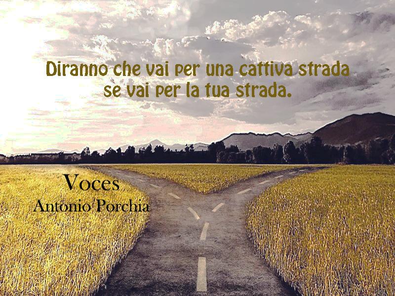 Aforisma. Antonio Porchia