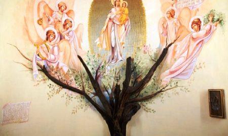 Sette Giugno Altare Ristrutturato