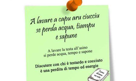 Ciucciu: post-it con proverbio