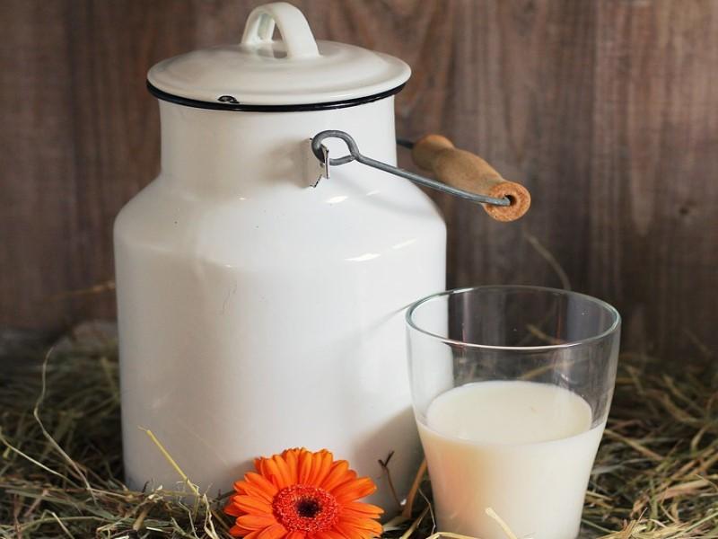 Lattari. Bicchiere e contenitore di latte