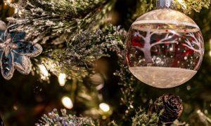 racconto di un Natale: Albero E Pallina