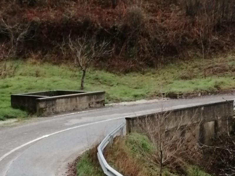Ponte ari tiarmuni