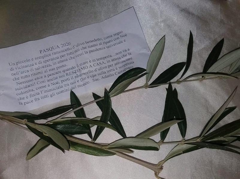 settimana santa Ramoscello d'ulivo