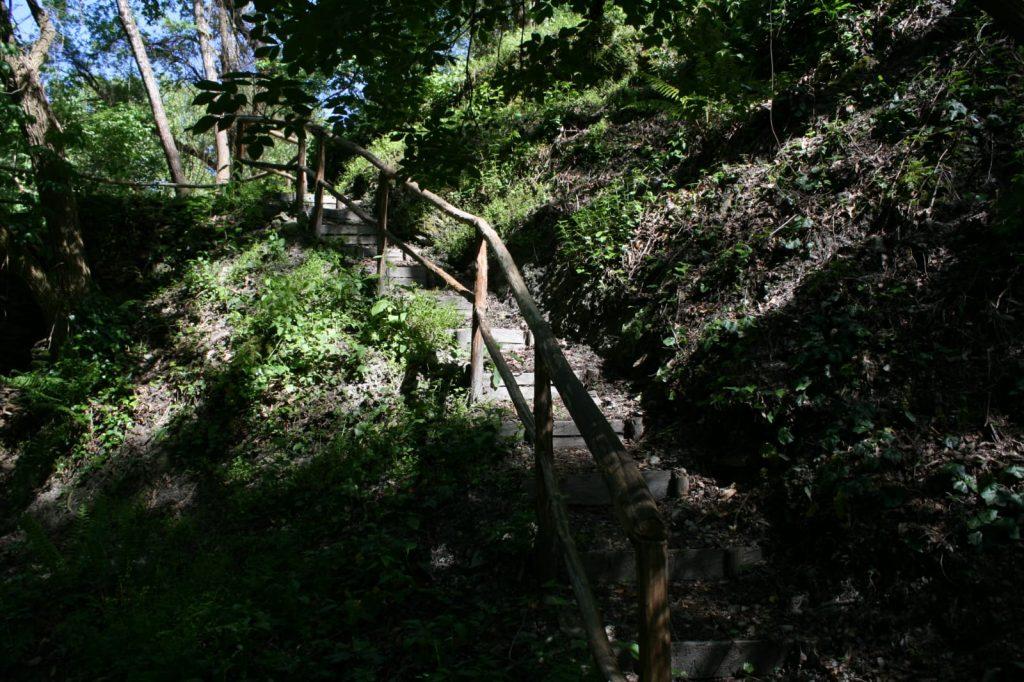 sentiero al lato del fiume