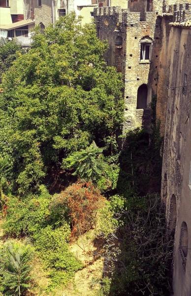 13 rane: Palazzo Donna Elvira