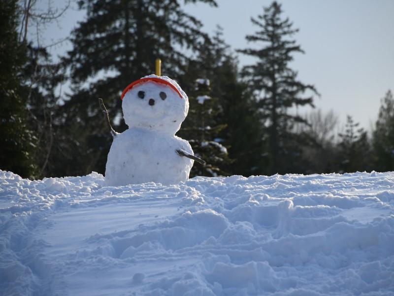 settimana bianca: Pupazzo Di Neve