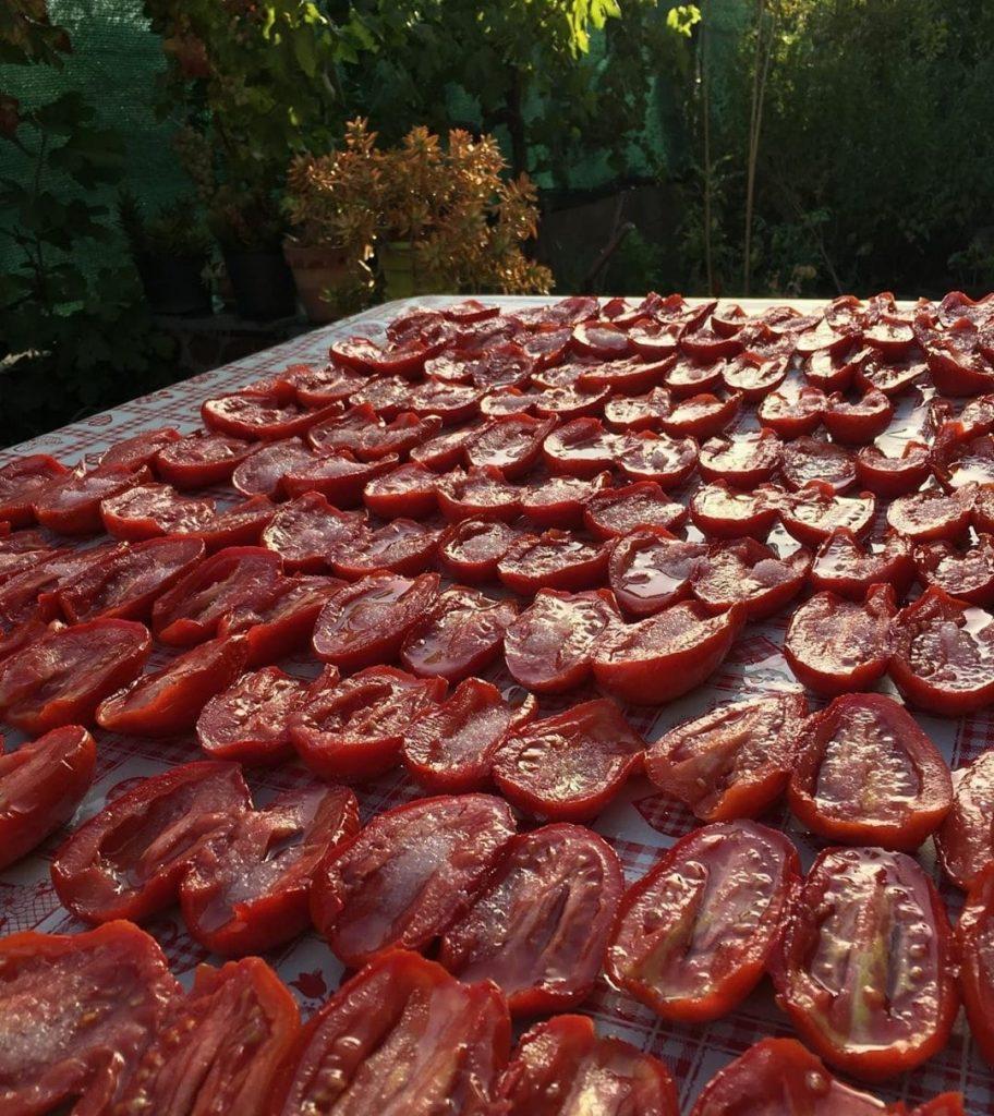 Pomodori Stesi Al Sole