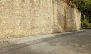 Progetto Murales Muro Conflenti