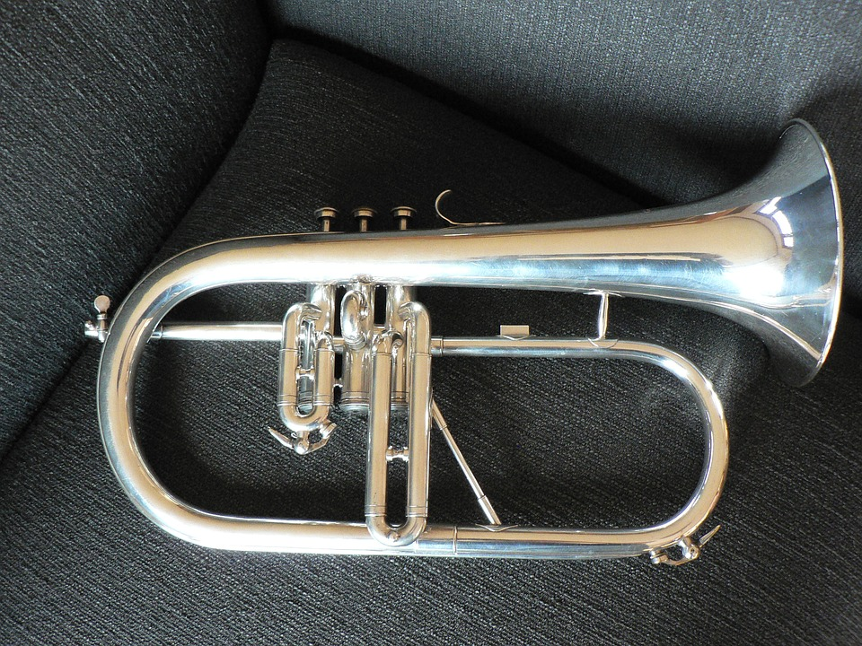 i balli nel polesine - strumento musicale