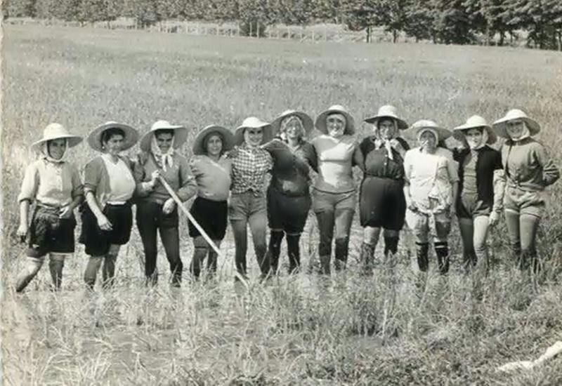 le mondine - Donne al lavoro